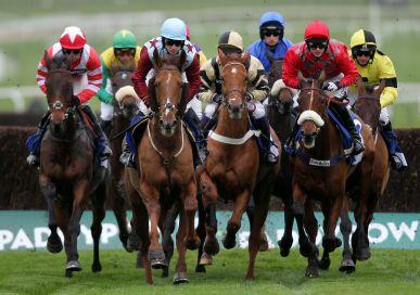 Horse Racing Ipswich